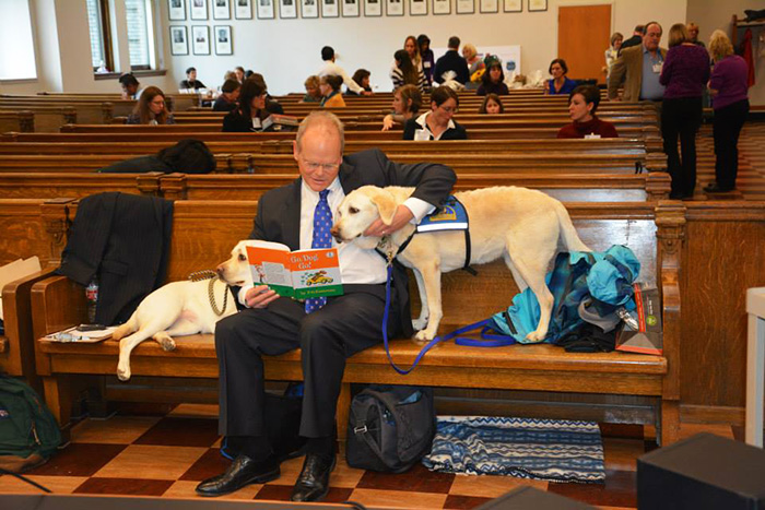 courthouse-dogs-calm-witness-victim-ellen-oneill-celeste-walsen-25