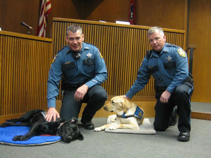 courthouse-dogs-calm-witness-victim-ellen-oneill-celeste-walsen-33