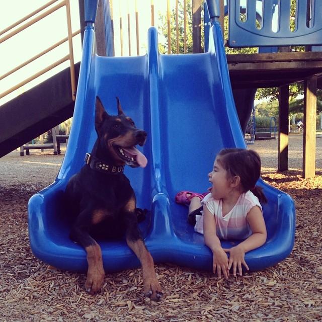 cutie-and-the-beast-dog-girl-seana-doberman-10