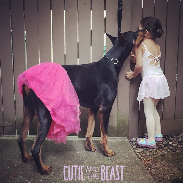 cutie-and-the-beast-dog-girl-seana-doberman-42