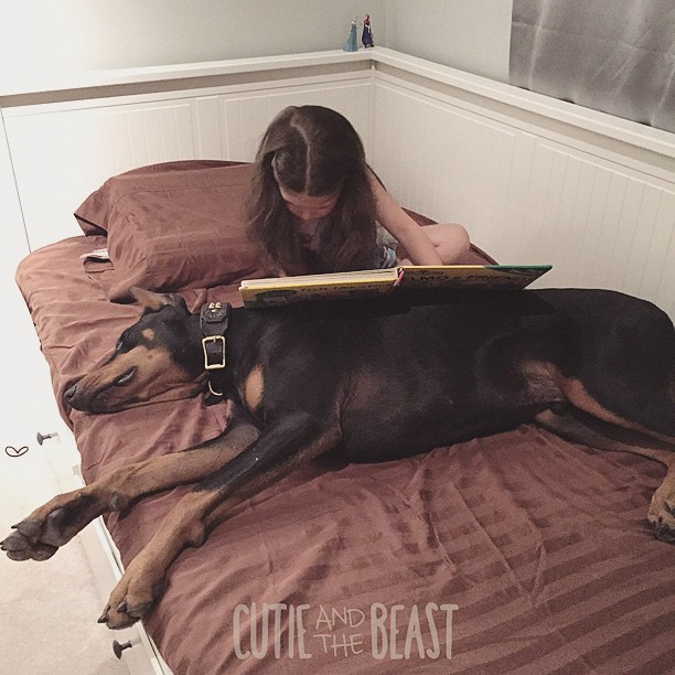 cutie-and-the-beast-dog-girl-seana-doberman-99