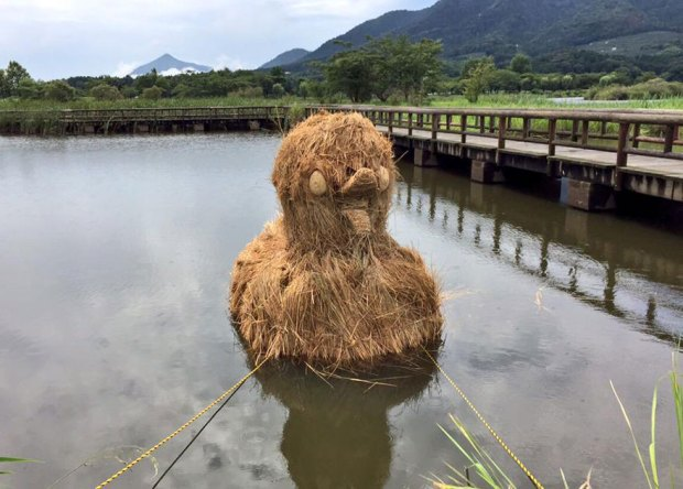 Straw Sculptures Wara Festival Niigata Japan Gigantic Duck Floating in Lake
