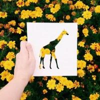 Artista usa natureza de silhuetas de animais papel de cor branca