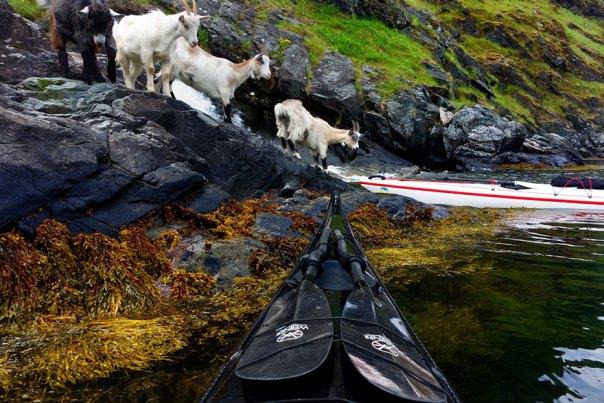 viajes-kayak-fotografía-fiordos-tomasz-Furmanek-noruega-16