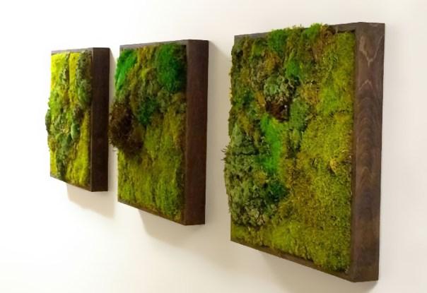 Moss Paintings