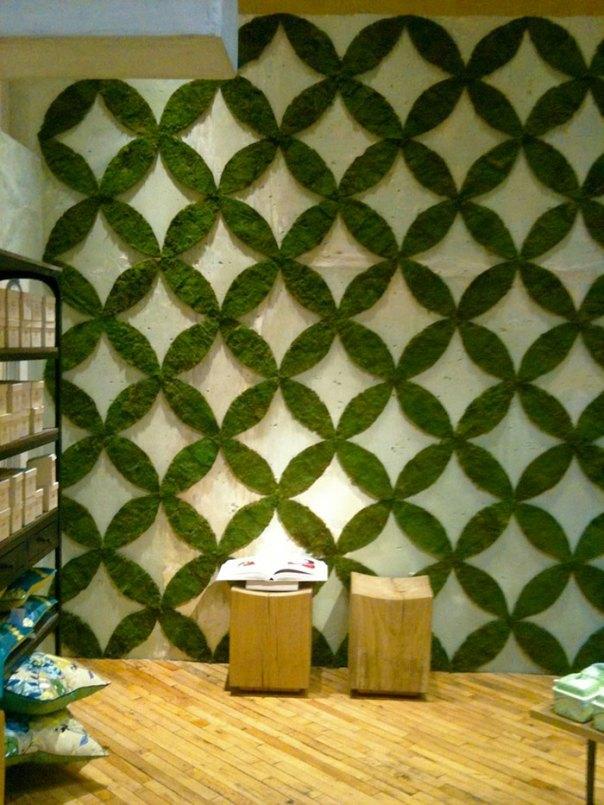 Moss Wall Installation
