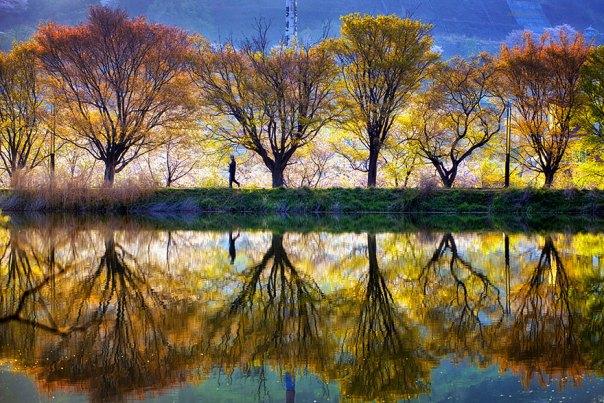 reflexión-paisaje-fotografía-jaewoon-u-3