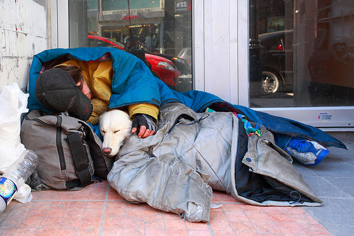 Homeless Man With His Closest Companion