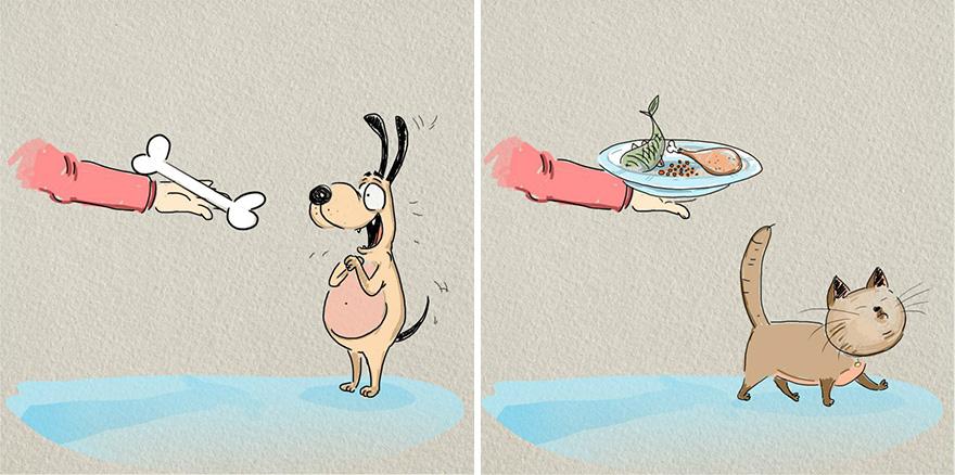 gatos-vs-cães-funny-ilustrações-bird-nascido de 3