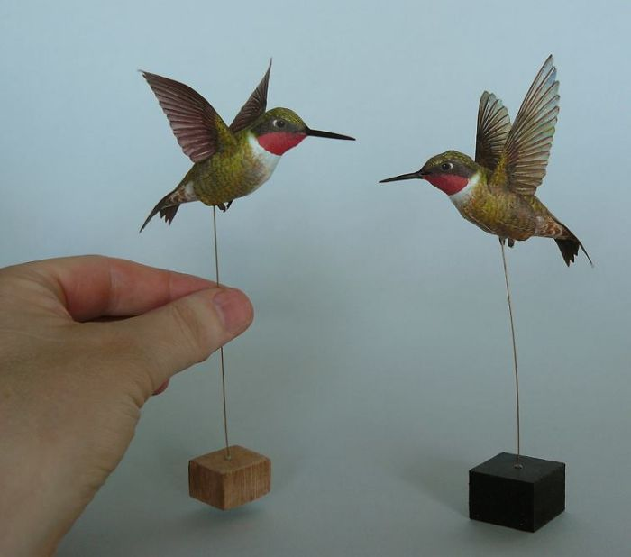 Curling Paper Hummingbird