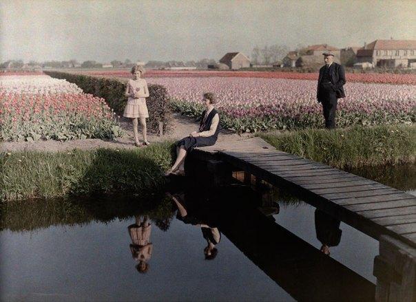 Los locales relajarse junto a la tulipán coloca largo del canal en Haarlem, Países Bajos, 1931