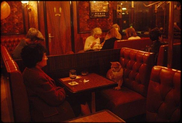 """Un habitual en Le Louis IX en París, """"caramelo"""" Mantiene una empresa cliente, mayo de 1988"""