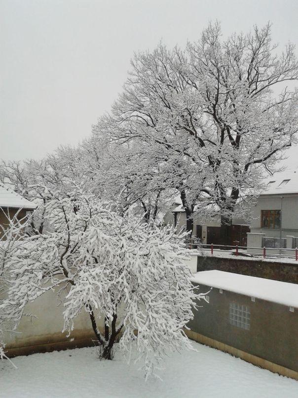 Vista invernal de mi oficina