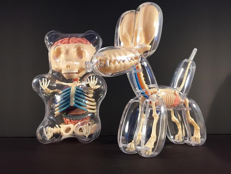 anatomical-balloons-dog-bear-jason-freeny-3