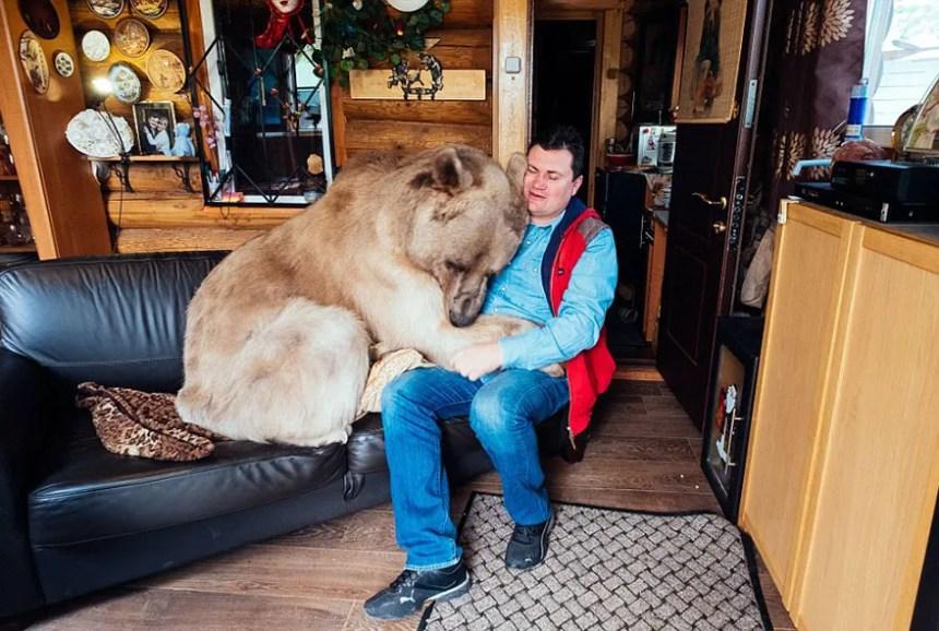 adottato-bear-russo-famiglia-Stepan-A15