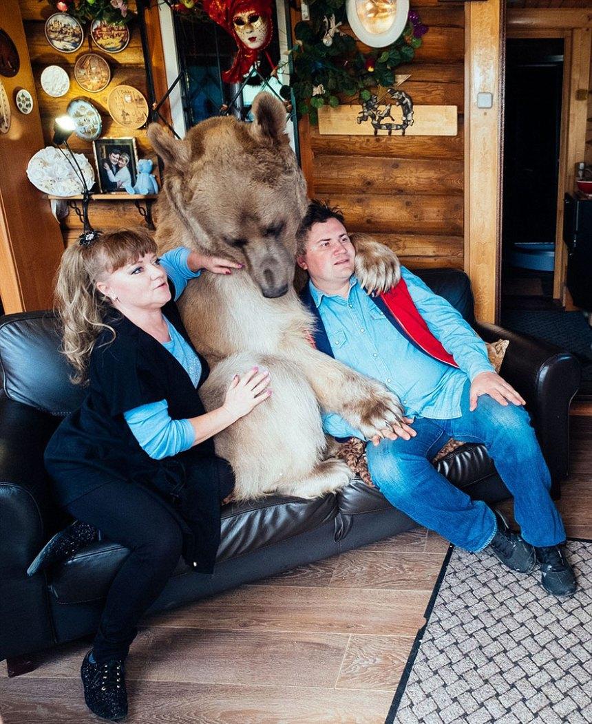 adottato-bear-russo-famiglia-Stepan-A17