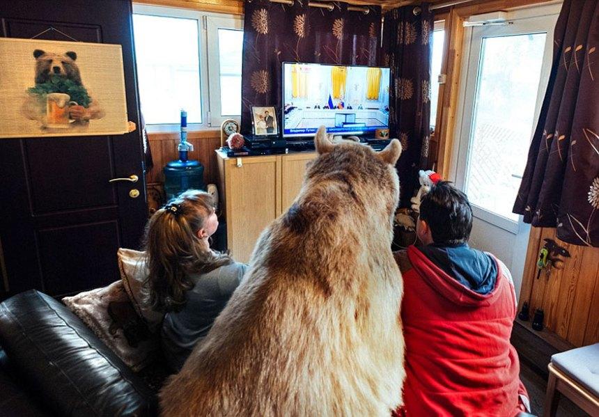adottato-bear-russo-famiglia-Stepan-a18