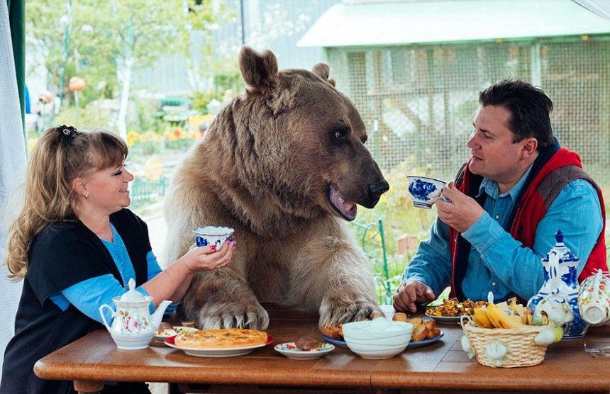 adottato-bear-russo-famiglia-Stepan-A20