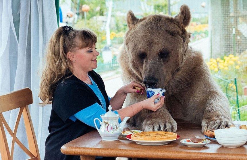 adottato-bear-russo-famiglia-Stepan-A3