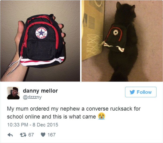 My Mum Ordered My Nephew A Converse Rucksack For School Online And This Is What Came