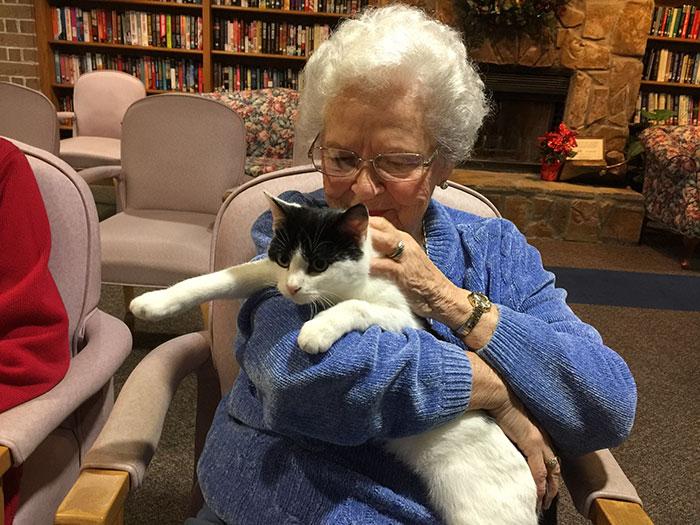 senior-cats-visit-nursing-home-pals-ohio-alleycat-resource-6