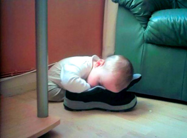 Napping In A Shoe