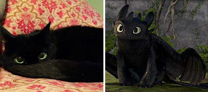 Toothless From How To Train Your Dragon