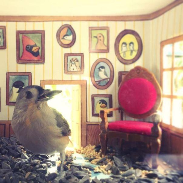 tiny-pájaro-amigos-casas-jada-Fitch -11