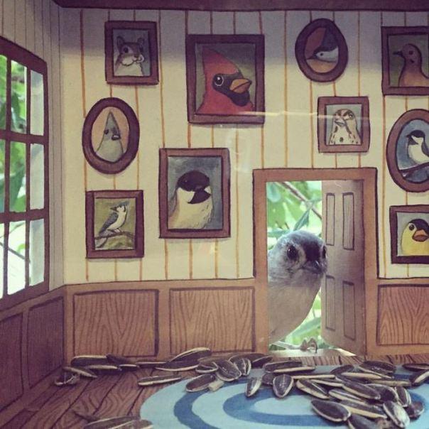 tiny-pájaro-amigos-casas-jada-Fitch -3