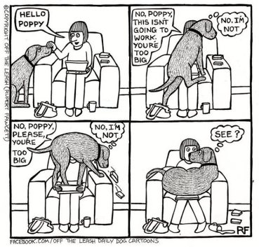 Image result for dog humour comic
