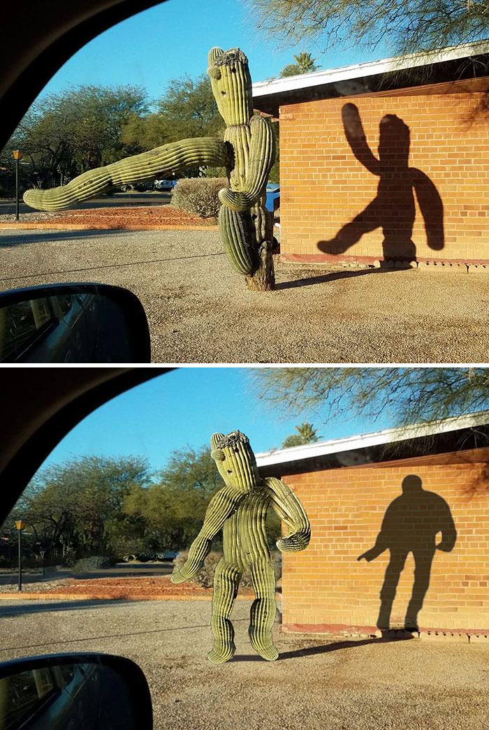 Dancing Cactus Shadow Photoshop Battle