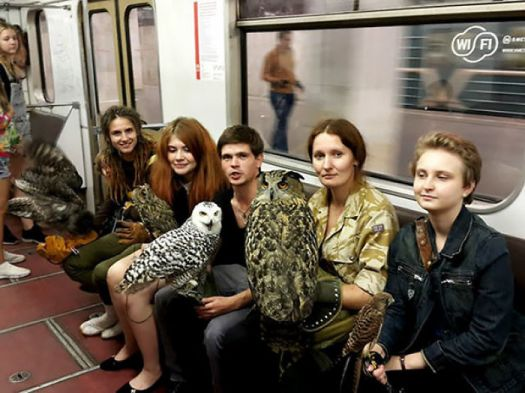 Taking The Subway In Moscow Is A Real Hoot