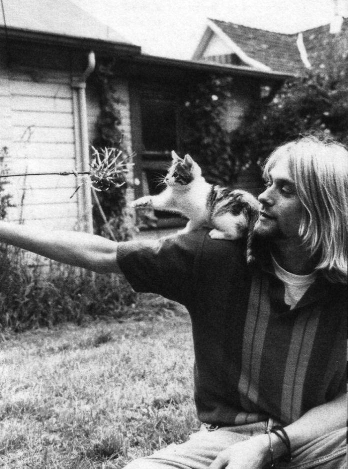 Personas famosas y sus gatos
