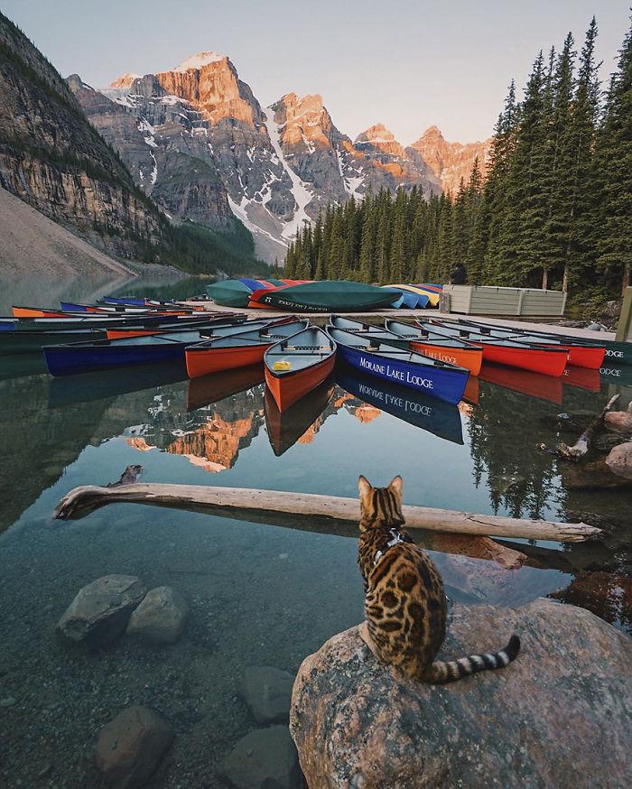Картинки по запросу moraine lake