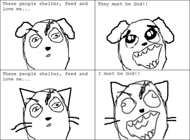 Funny Cats Vs. Dogs Comics
