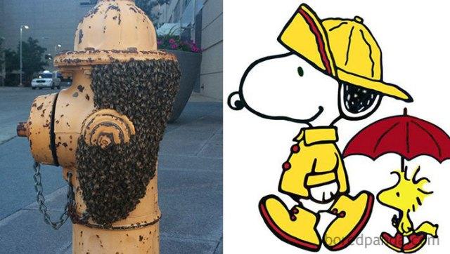 Enjambre de abejas en una boca de riego, semejan snoopy con sombrero