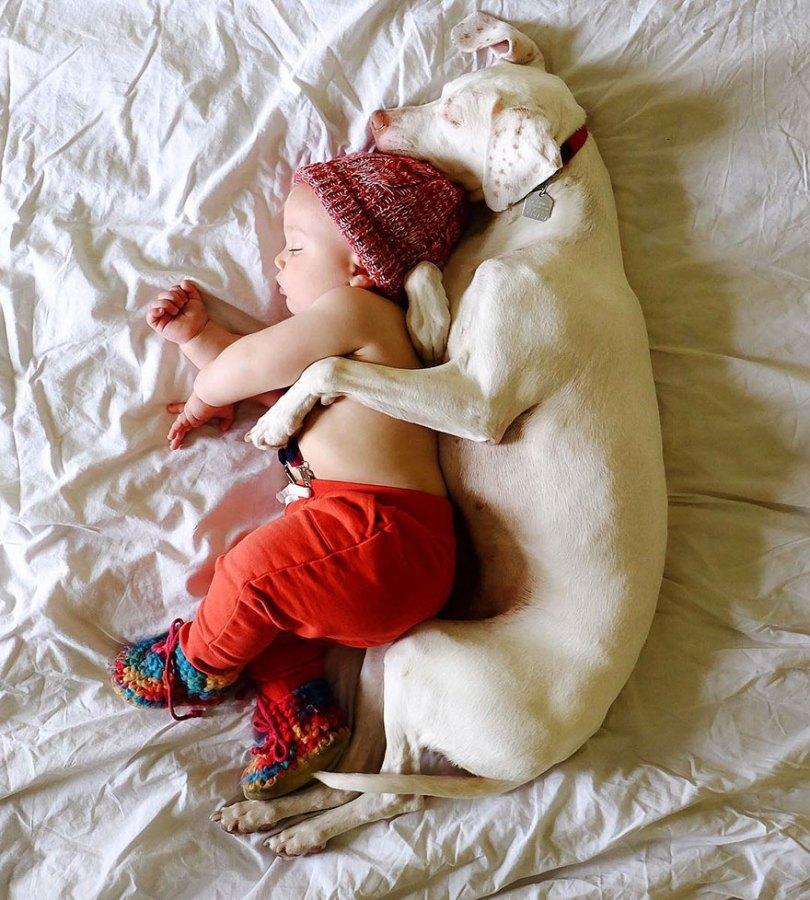 abused rescue dog love child nora elizabeth spence 31 - O melhor amigo do homem