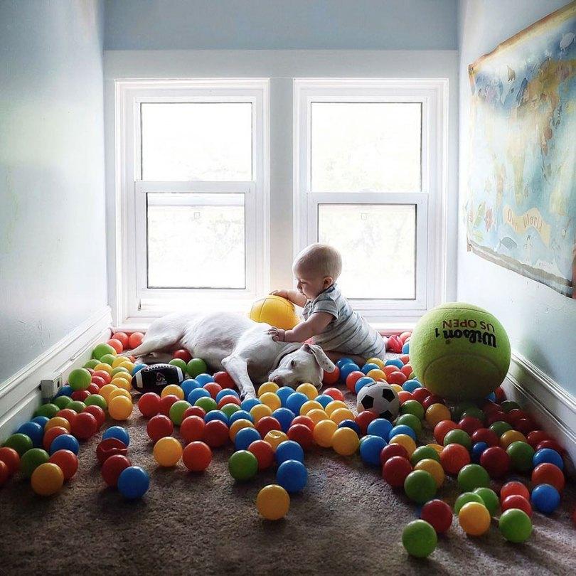 abusado-salvamento-cão-amor-criança-nora-elizabeth-spence-36