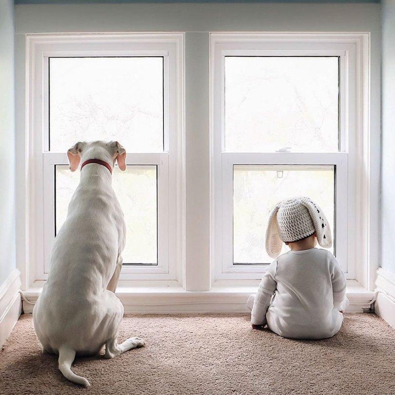 abusado-resgate-cão-amor-criança-nora-elizabeth-spence-38