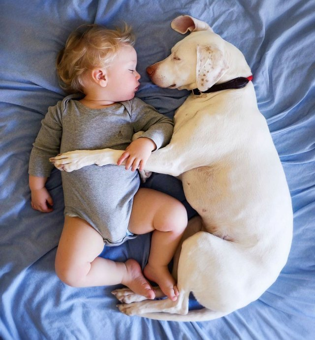 abused-rescue-dog-love-child-nora-elizabeth-spence-41
