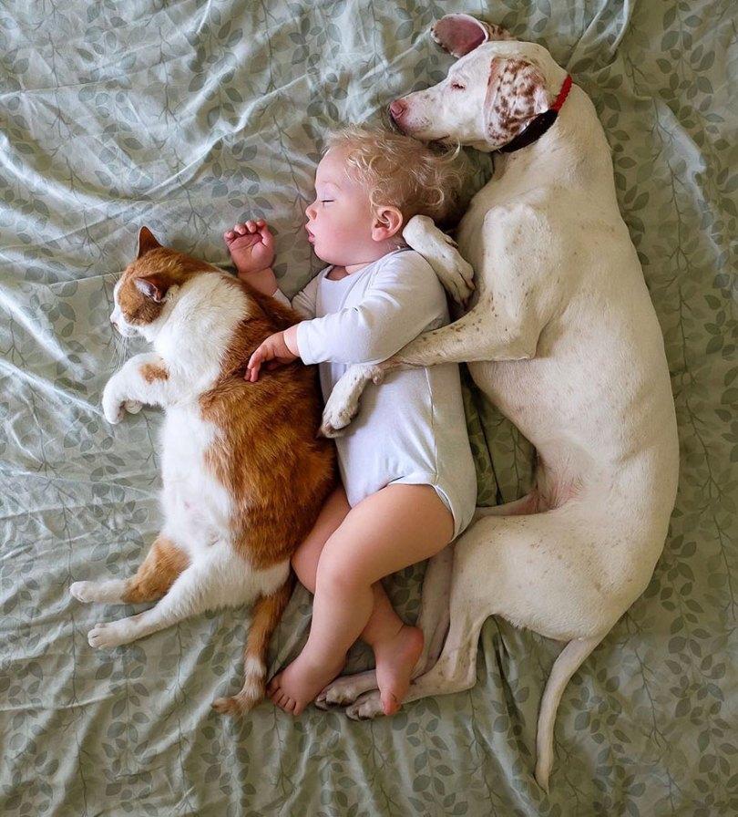 abusado-salvamento-cão-amor-criança-nora-elizabeth-spence-43