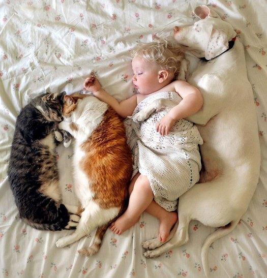 abused-rescue-dog-love-child-nora-elizabeth-spence-46