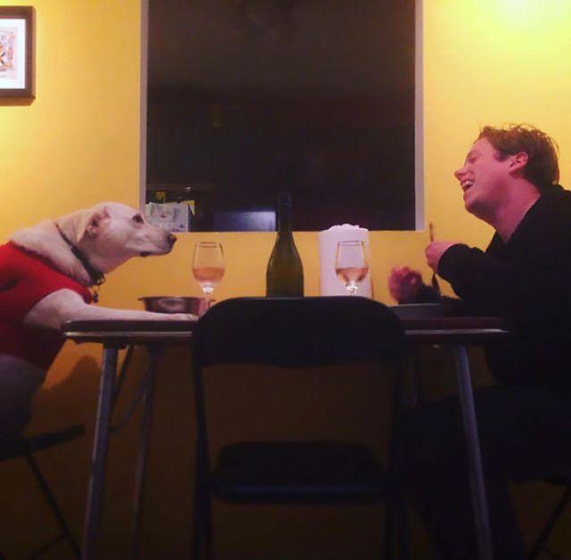 Mi novia está de viaje, así que el chucho y yo tuvimos la cena juntos que siempre quisimos