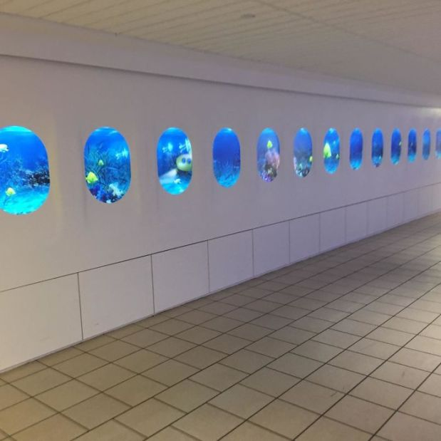 My Local Airport Added A New Display To Mimic The Inside Of A Plane. They Chose An Underwater Scene As The Background. How Reassuring...
