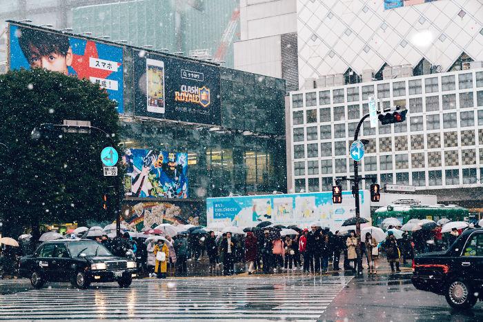 Snowy Shibuya, Tokyo