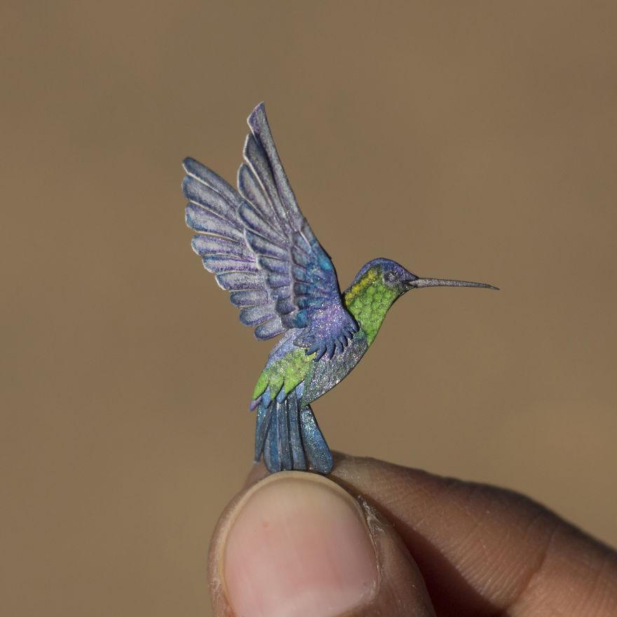 Hummingbird (Violet-Crowned Woodnymph)