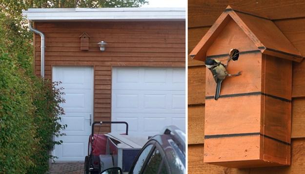 I-make-camouflage-birdhouses-to-keep-the-city-birds-out-of-sight-5a7423ea9a5ed__880 I Make Camouflage Birdhouses To Keep The City Birds Out Of Sight Art Design Random