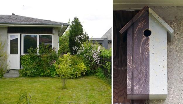 I-make-camouflage-birdhouses-to-keep-the-city-birds-out-of-sight-5a7423fb9b305__880 I Make Camouflage Birdhouses To Keep The City Birds Out Of Sight Art Design Random