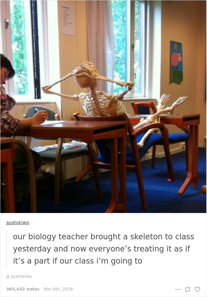 Our Biology Teacher Brought A Skeleton To Class