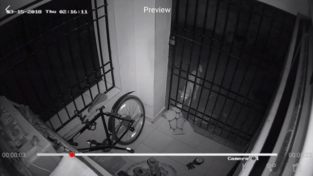 caught-doormat-robber-roshni-9a Guy Installs Secret Camera To Catch The Thief That Keeps Stealing His Things, Can't Believe His Eyes Design Random